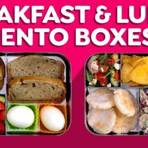 Breakfast & Lunch Bento Box Ideas are BACK!