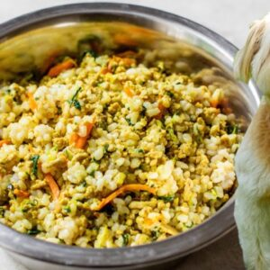 HOMEMADE DOG FOOD | healthy dog food recipe